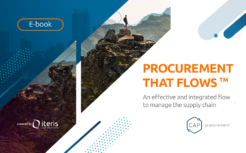 Procurement That Flows™  – 9 key principles to master operations, agility, and impact