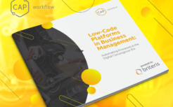 Low-Code Platforms in Business Management
